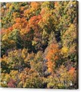 Connecticut Fall Color Acrylic Print