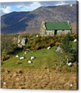 Connemara Cottage Ireland Acrylic Print