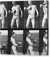 Consecutive Images Of Man Lifting Acrylic Print by Everett