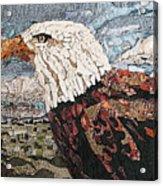 Consumer Eagle Veiw  Acrylic Print