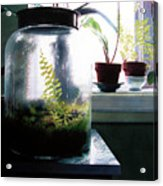 Contained Acrylic Print
