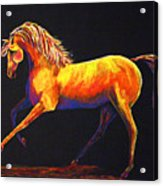 Contemporary Equine Painting Illuminating Spirit Acrylic Print