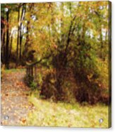 Contented Path Acrylic Print