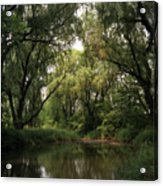 Cook County Forest Preserve No 6 Acrylic Print