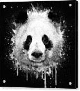 Cool Abstract Graffiti Watercolor Panda Portrait In Black And White  Acrylic Print
