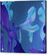 Cool Blue Lilies Acrylic Print