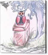 Cool Owl Acrylic Print