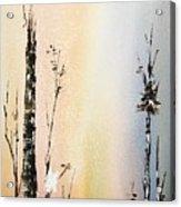 Cool Spring Acrylic Print