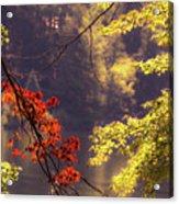 Cool Vermont Autumn Day Acrylic Print