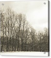 Cool Winter Acrylic Print