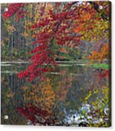 Cooper Mill Pond Acrylic Print