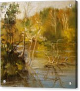 Coosa River In The Fall Acrylic Print