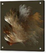 Copper And Metal Fiber Spray Acrylic Print