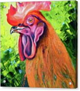 Copper Maran French Rooster Acrylic Print