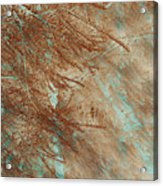 Copper Pines Acrylic Print