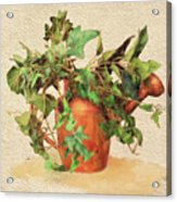 Copper Watering Can Acrylic Print