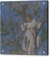 Copy Of Giotto's Frescoes Acrylic Print
