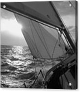 Coquette Sailing Acrylic Print