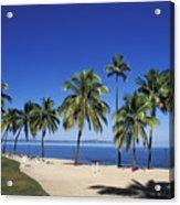 Coral Coast Palms Acrylic Print