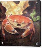 Coral Crab Acrylic Print
