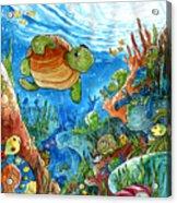 Coral Dreams Acrylic Print