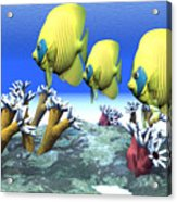 Coral Moods Acrylic Print by Corey Ford