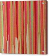Coral Stripe  Acrylic Print