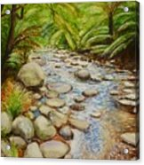 Coranderrk Creek Yarra Ranges Acrylic Print