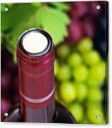 Cork Of Wine Bottle  Acrylic Print by Anna Omelchenko