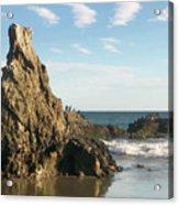Cormorants At El Madador Beach Acrylic Print