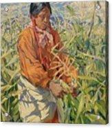 Corn Picker 1915 Acrylic Print