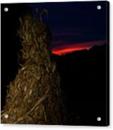 Corn Shock At Setting Sun Acrylic Print