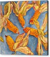 Corn Acrylic Print