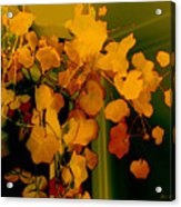 Corner In Green And Gold Acrylic Print