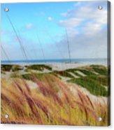 Coronado Island Acrylic Print