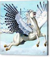Cory Pegasus Acrylic Print