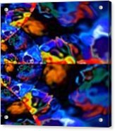 Cosmic Colors Acrylic Print