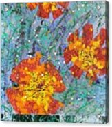 Cosmic Cosmos Acrylic Print
