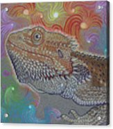 Cosmic Dragon Acrylic Print