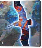 Cosmic Flyer Acrylic Print