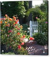 Cottage And Roses Acrylic Print