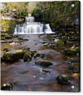 Cotter Force Acrylic Print