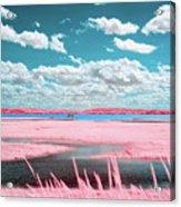Cotton Candy Marsh Acrylic Print