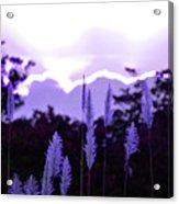 Cotton Candy Sunset 3 Acrylic Print