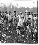Cotton Planter & Pickers, C1908 Acrylic Print