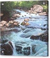 Cotton Wood Creek #4 Acrylic Print