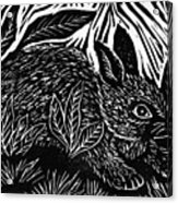 Cottontail Block Print Acrylic Print by Ellen Miffitt