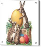 Cottontails And Eggs Acrylic Print