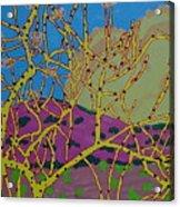 Cottonwood Number 4 Acrylic Print