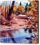 Cottonwoods In October Acrylic Print